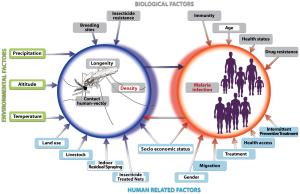 Malaria Risk Factors